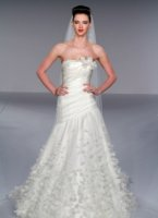 Wedding Dresses: Melissa Sweet