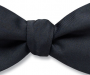 Jewelry & Accessories in Meridian, ID: Fly Guy Bow Tie