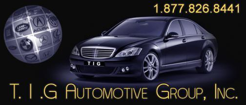 Portfolio image for T.I.G. Automotive Group