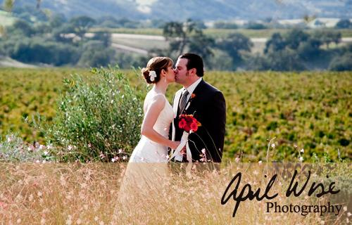 Portfolio image for April Wise Photography