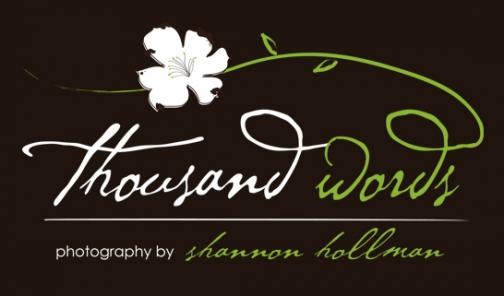 Portfolio image for thousand words photography