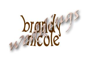 Portfolio image for Brandy Nicole Weddings