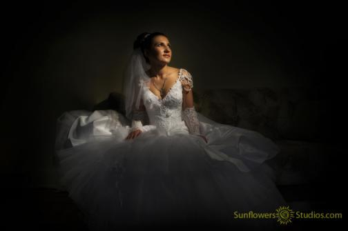 Portfolio image for Sunflowers Studios Photography