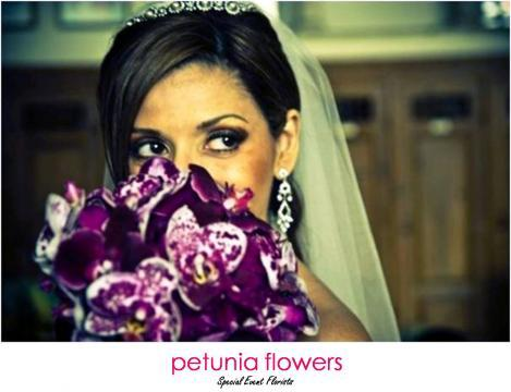 Portfolio image for Petunia Flowers