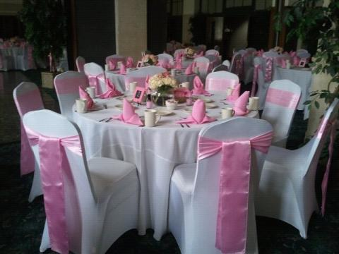 Portfolio image for Erie Chair Covers