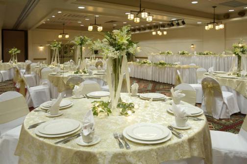 Wedding Venues In Baton Rouge LA Holiday Inn Baton Rouge South