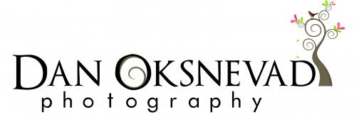 Portfolio image for Dan Oksnevad Photography