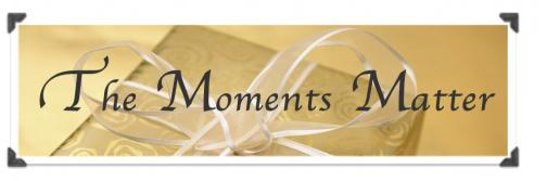 Portfolio image for The Moments Matter