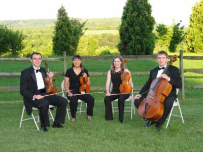 Portfolio image for Signature String Quartet