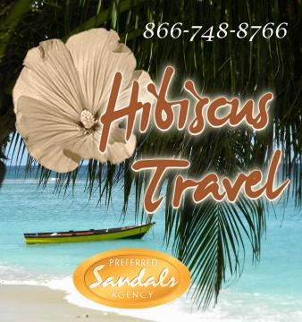 Portfolio image for Hibiscus Travel