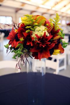 Portfolio image for Sublime Stems
