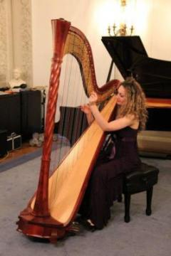 Portfolio image for Boston Harpist