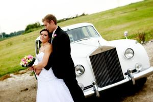 Portfolio image for Weddings By Renee