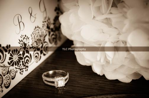 Portfolio image for TLC Photography
