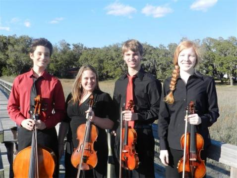 Portfolio image for Lowcountry Strings