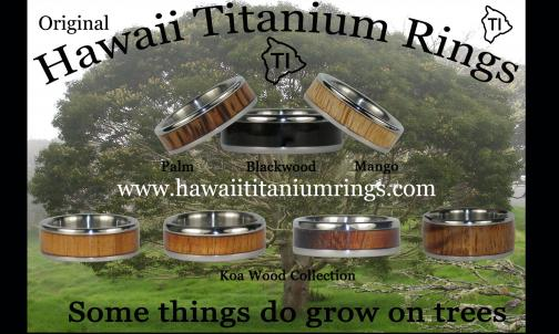 Portfolio image for Hawaii Titanium Rings
