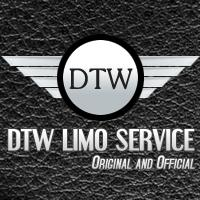 Portfolio image for DTW Limo Service
