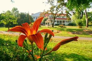 Portfolio image for Historic Rosemont Manor