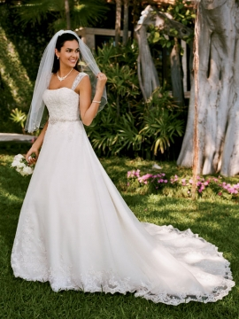 David's Bridal Collection Wedding Dress Style WG3007