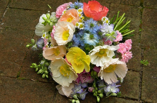 romantic wedding flowers Poppy bridal bouquet colorful Islandic Poppies foxglove fairy rose