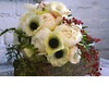Romantic-wedding-flowers-poppy-bridal-bouquet-poppies-posies-ivory-red-black.square