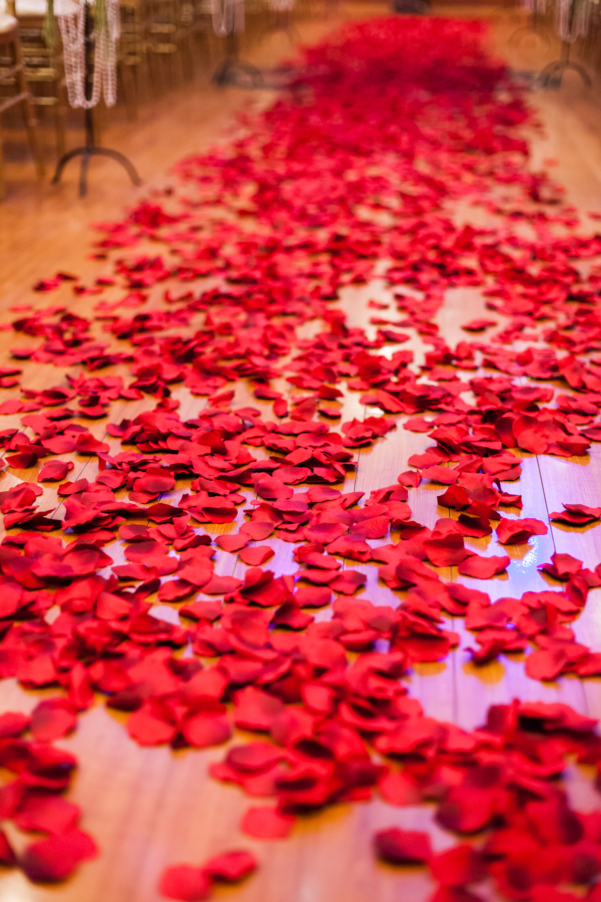 Epic-wedding-in-los-angeles-california-weddings-red-rose-petal-covered-ceremony-aisle.original