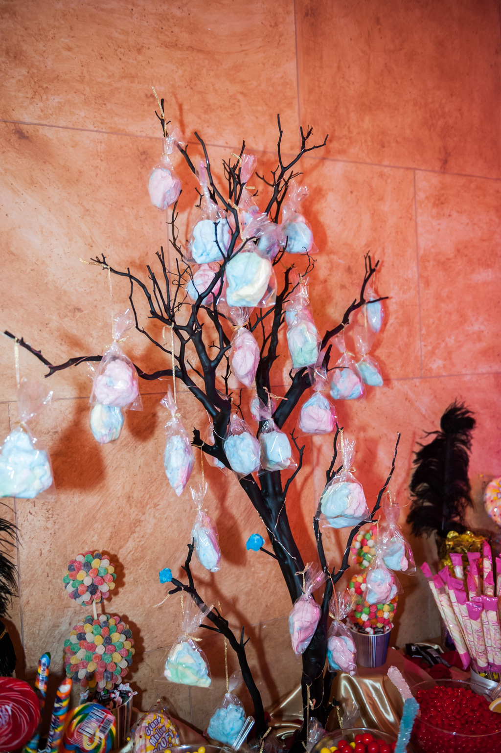 Epic-wedding-in-los-angeles-california-weddings-candy-bar-cotton-candy-tree.full