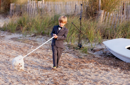 Beach wedding in Deleware rustic backdrop wedding party photos