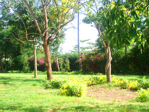 photo of Laiser View Gardens