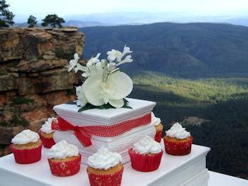 photo of San Tan Weddings
