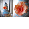Coral_blue_bird_wedding_cake.square