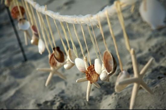 photo of Ann Musing Designs