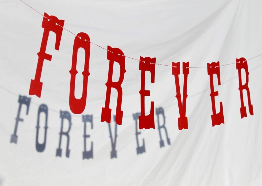 Vintage-carnival-wedding-theme-forever-banner.full