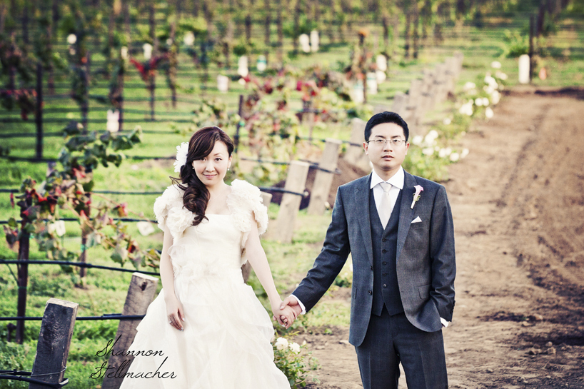Romantic-winery-wedding-in-california.full