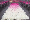 Amazing-wedding-ceremony-aisle-white-pink-ombre-petals.square