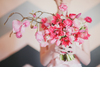 Whimsical-pink-branchy-bridal-bouquet.square