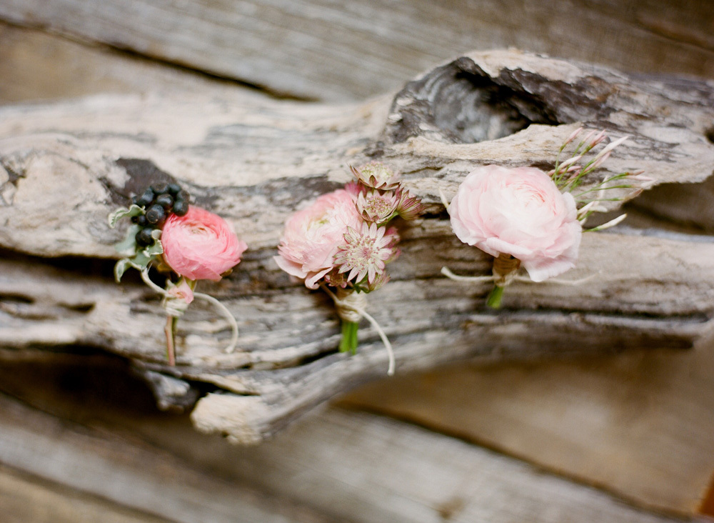 Romantic Light Pink Ranunculus Wedding Boutonnieres