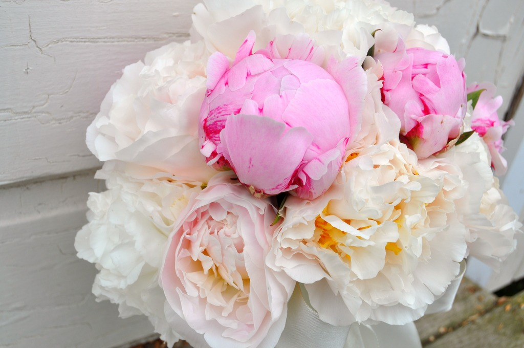 Stunning-white-and-pink-peony-bridal-bouquet.full