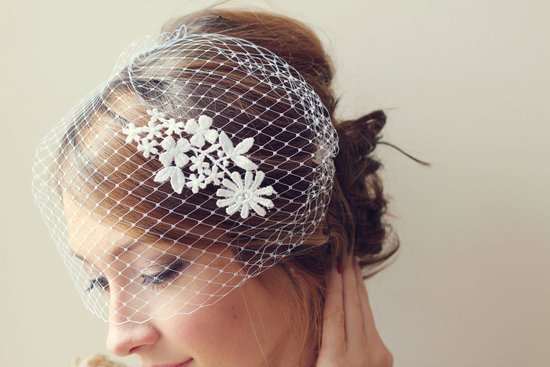 Lace Adorned Birdcage Bridal Veil