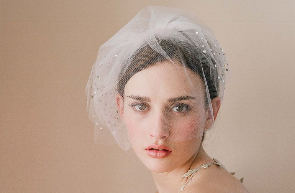 Classic-bridal-veil-birdcage-hair-accessory-with-scattered-swarovski-crystals.full