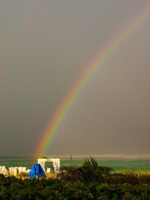 Rainbow.full