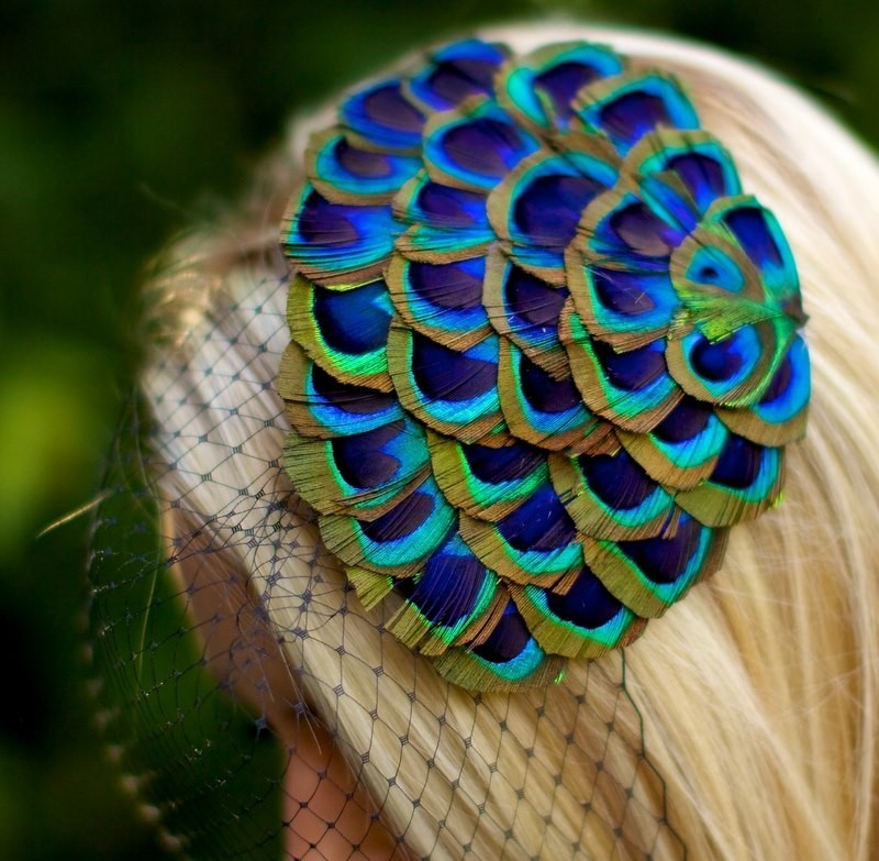 Peacock-feather-bridal-fascinator.full