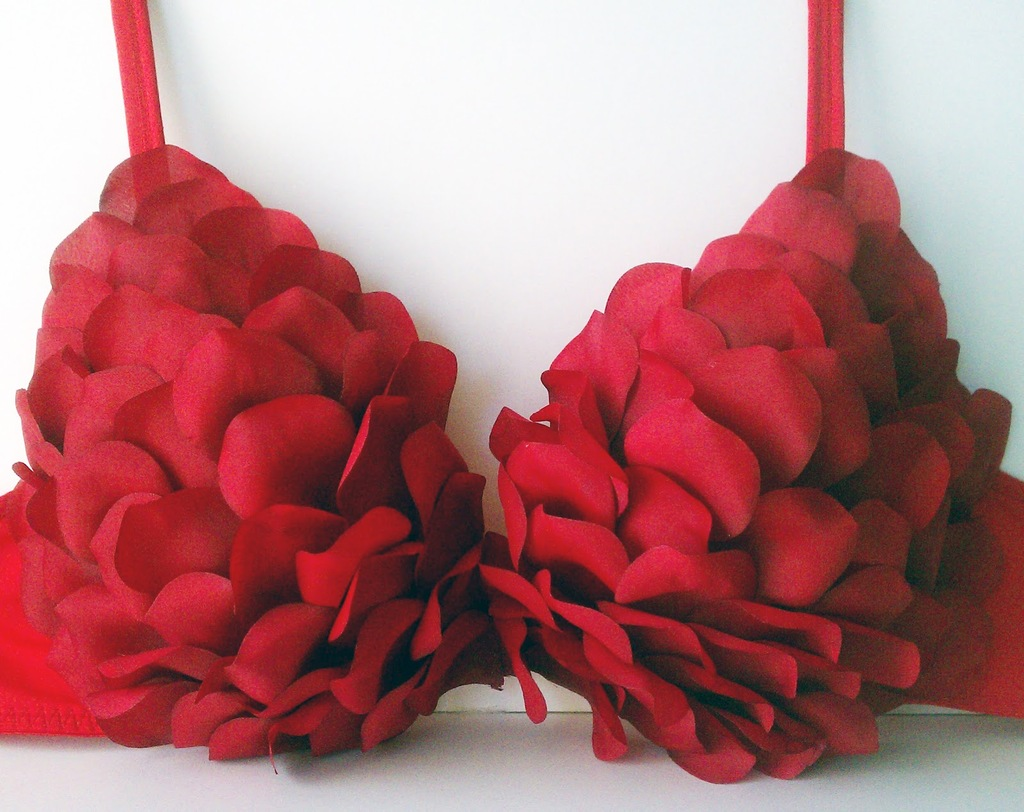Red Rose DIY Bra for V Day Brides