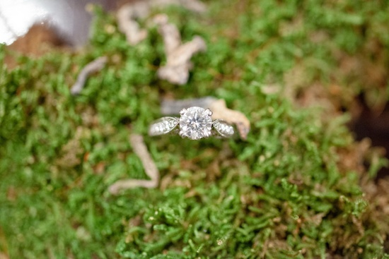 Round Diamond Engagement Ring with Moss Background