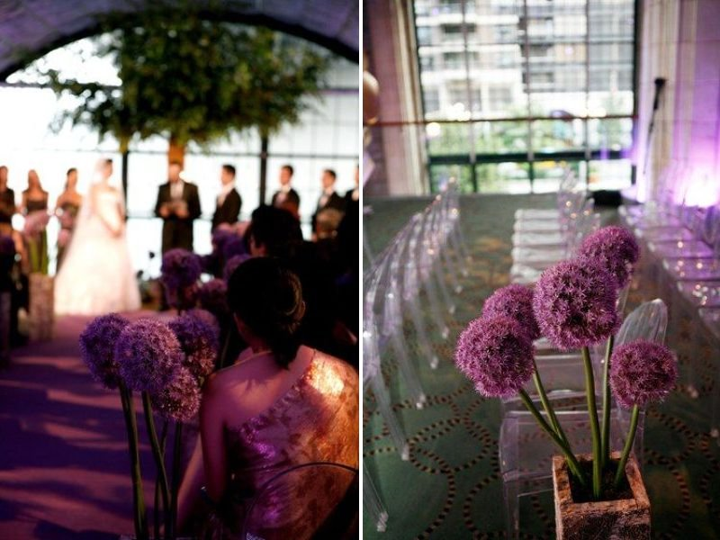 Potted-plants-purple-lining-wedding-ceremony-aisle.full