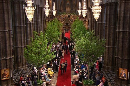 Royal Wedding Tree Lined Ceremony Aisle