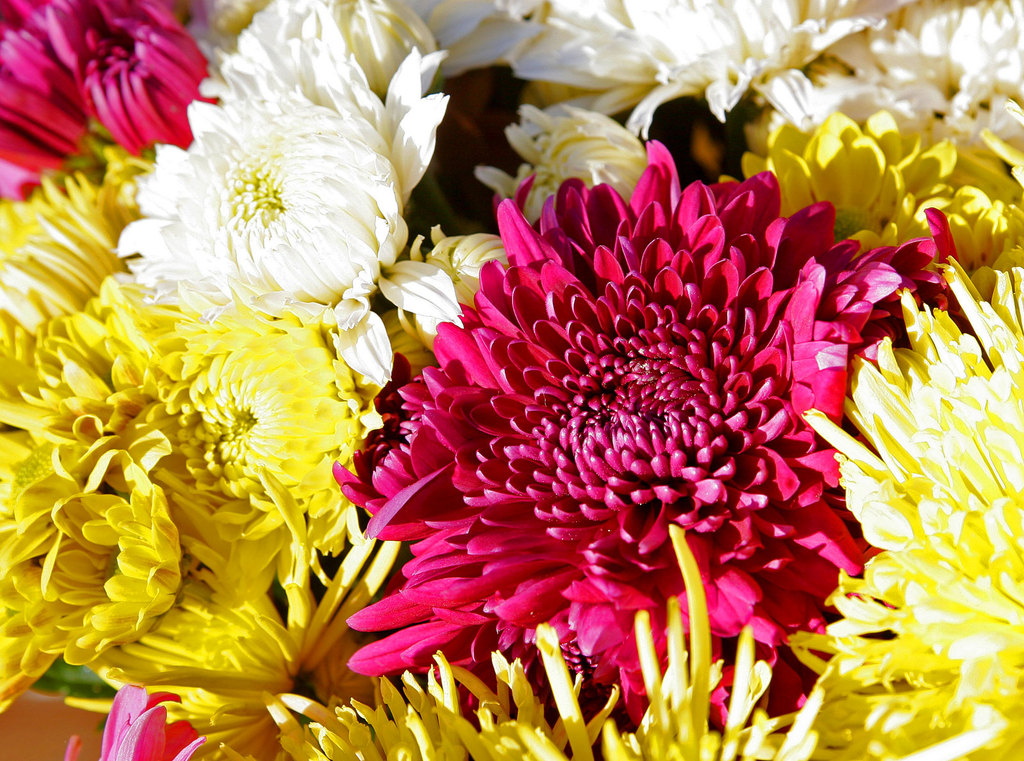 Chrysanthemum-wedding-flower-arrangement.full