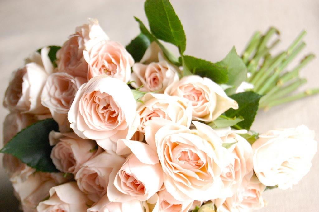 DIY Bridal Bouquet Light Peach Spray Roses