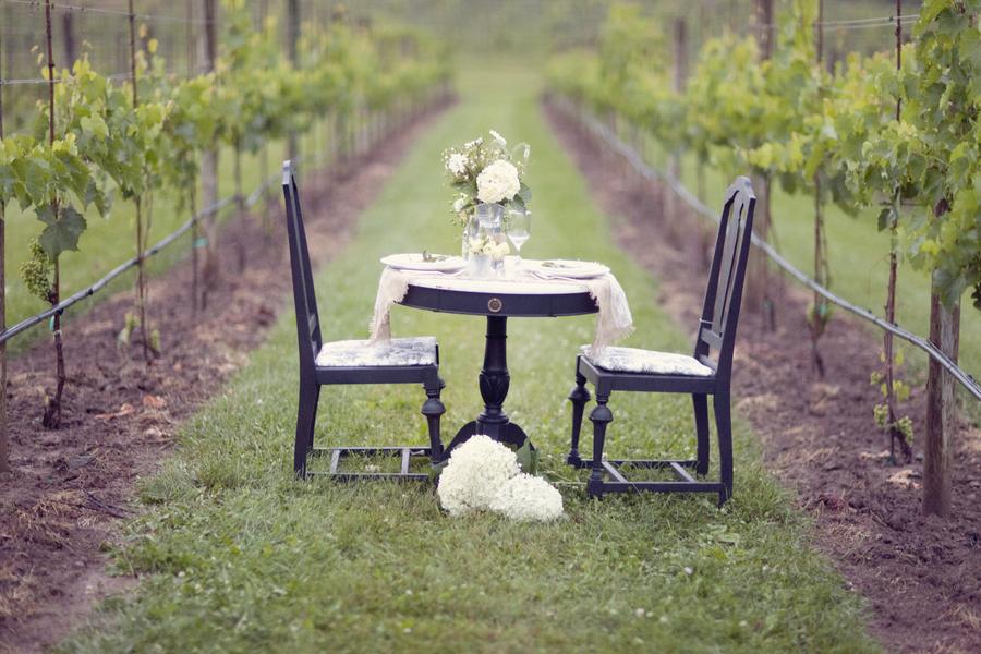 Frenchcountryvineyard__zlatamodeenphotography_vineyardshoot94_low.full