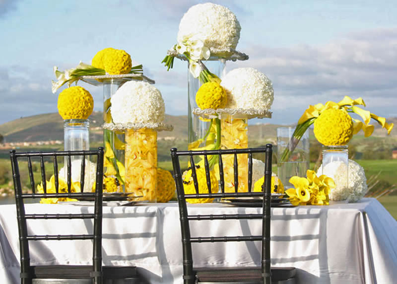 Yellow-and-white-country-wedding-2.full